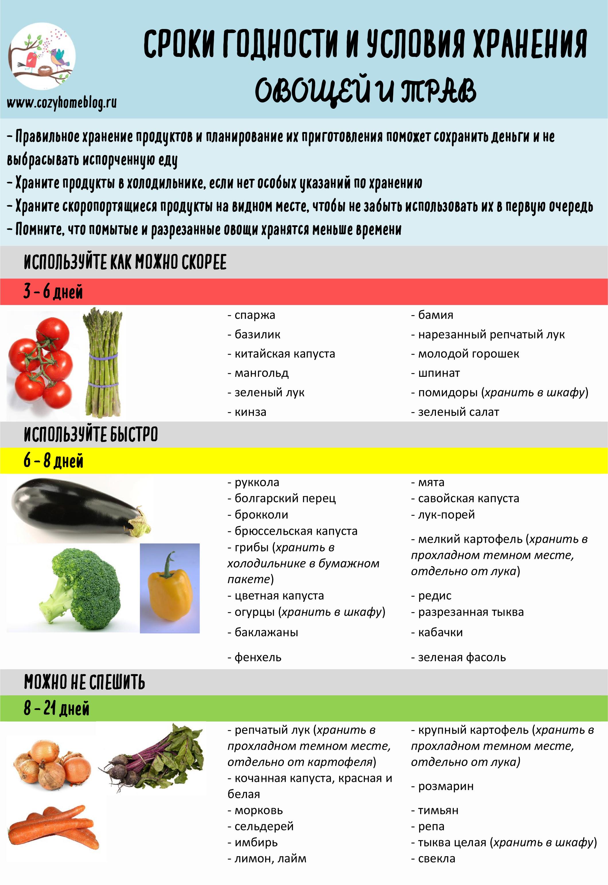 Как правильно и сколько времени хранить овощи