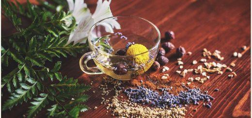 какие травяные чаи полезны для здоровья
